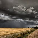Storm Clouds Saskatchewan ominous wheat fields Saskatchewan by pictureguy