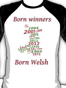 Wales 2013 Champions years T-Shirt