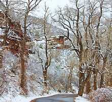 Red Rock Winter Road Portrait by Bo Insogna