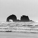 Twin rocks Oregon by Hannah Fenton-Williams