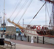 Bay City Tall Ship Celebration (2010) - Departure Day by Francis LaLonde