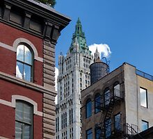 Woolworth & Friends - New York City by Joel Raskin