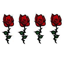Four Rose Row by Erin Baird
