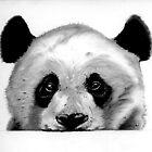 Panda sketch by Erin Quinn