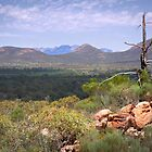 Wilpena Pound - Flinders Ranges by pbclarke