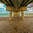 Venice Florida Fishing Pier next to Sharky's by Steve Case