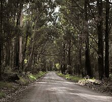 Narracan Road by joannegrist89