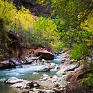Virgin River in Autumn by Silken Photography
