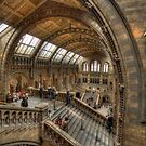 The Natural History Museum - London by Graham Ettridge