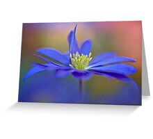 Winter Windflower Greeting Card