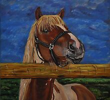 Over The Fence by Tricia Winwood