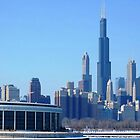Shedd Aquarium and Chicago Skyline View by CanoeComsArt
