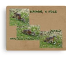 Curious Chipmunk Gets A Surprise Canvas Print