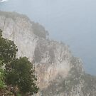 Capri View by Christopher Clark
