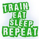 Train, Eat, Sleep, Repeat by empireofdirt
