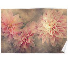 """""""Autumn Dahlia's"""" Poster"""