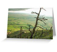 Stormy Tree Greeting Card