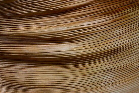 sheath ripples by yvesrossetti