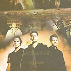 Skyfall (Team Free Will) by DoctorsDesciple