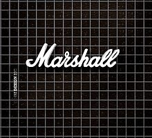 Marshall Amp_ipad_cover by ANDIBLAIR