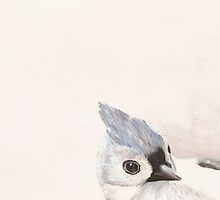 Titmouse Bird Print by cathy savels