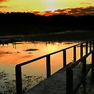 Belizian lake at sunset by Linda Sparks