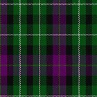 01107 Wilson's No. 233 Fashion Tartan Fabric Print Iphone Case by Detnecs2013
