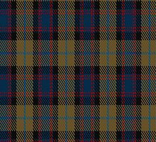 01114 Antique 2000 Fashion Tartan Fabric Print Iphone Case by Detnecs2013