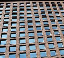 many windows by mrivserg