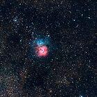 M20 - Trifid Nebula by Sylvain Girard