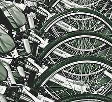 Several Bikes by Scott Johnson
