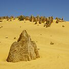 The Pinnacles - Nambung National Park WA by Rosaria