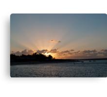 Sun burst over Shark Bay Canvas Print
