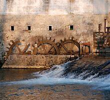 Mill, Slovenia by jojobob