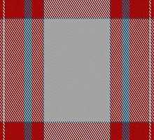 01214 Salmon Wives Unfashionable Tartan Fabric Print Iphone Case by Detnecs2013