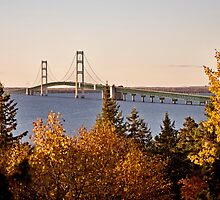 Mackinaw City Bridge Michigan Autumn Fall St Ignace by pictureguy