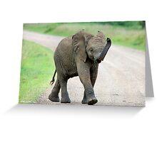 THE AFRICAN ELEPHANT – Loxodonta Africana - AFRIKA OLIFANT Greeting Card