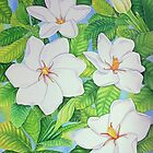 Hawaiian Gardenias by joeyartist