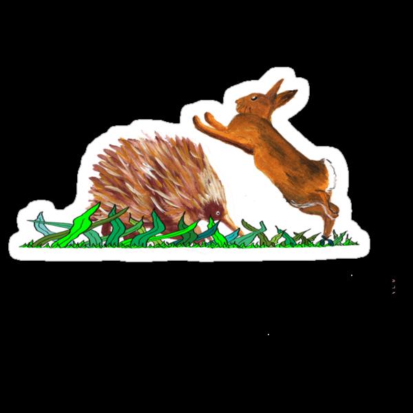 Echidna - Rabbit Play by David Fraser