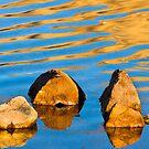Reflections In Zen II by John  De Bord Photography