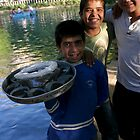 Food for holy carp in Urfa by Jens Helmstedt