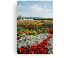 Flower Display, Keszthely Canvas Print