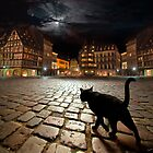 Strasburg&#x27;s Night by Igor Zenin