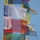 Prayer Flags by Jan Vinclair