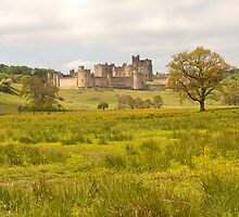 Alnwick castle in Northumberland by David Patterson