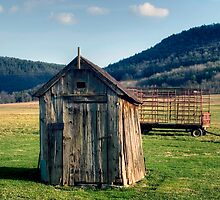 Old Farm Shed by Gene Walls
