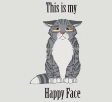 Happy Face - Grey Tabby Cat by CheetagonZita