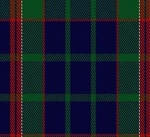 01264 Ice Jam Fashion Tartan Fabric Print Iphone Case by Detnecs2013