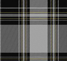 01265 Gang Plank Fashion Tartan Fabric Print Iphone Case by Detnecs2013