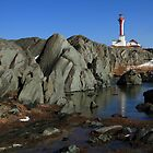 Sunny March Day at Cape Forchu by Debbie  Roberts